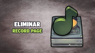 eliminar record page